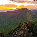 Reisen und Touren: Der Geschmack von Afrika - Die Gardenroute