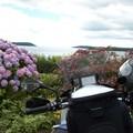 Reisen und Touren: 10 Tage Irland Rundreise