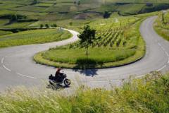 Motorcycle Tour: Palatinate - Alsace