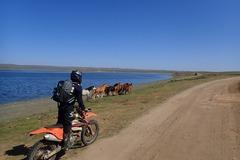 Motorcycle Tour: Mongolia: Khangai Little Baikal