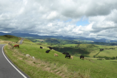 Motorcycle Tour: Wales - Tours in the Land of the Red Dragon