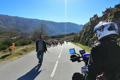 Motorcycle Tour: Portugal (North) Douro Valley - Self Guided