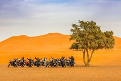 Motorcycle Tour: Morocco - Mountains, Deserts, and Oases