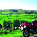 Reisen und Touren: Emerald Ireland: Fähranreise - 14 Tage Saison 2