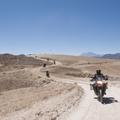 Reisen und Touren: Abenteuer Altiplano 2018