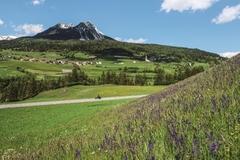 Reisen und Touren: Grand Tour of Switzerland - West Loop mit Harley-Davidson®